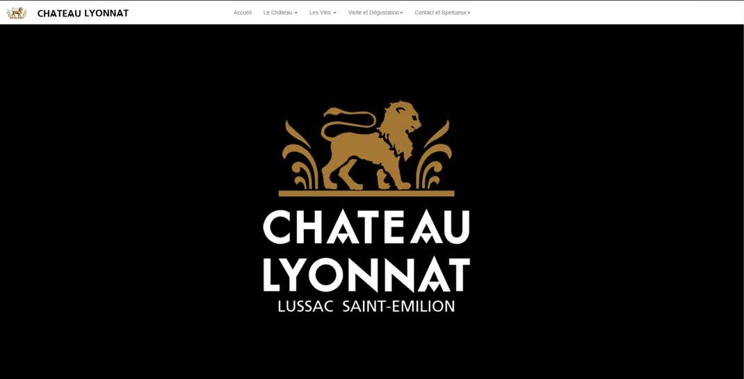 creation bordeaux web creation Chateau lyonnat